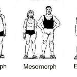 Invloed van jouw lichaamstype op fitness resultaten