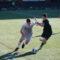 Voeding voor voetballers om de prestaties te verbeteren